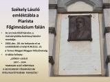 temesvar_114