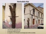 temesvar_136