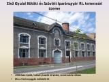 temesvar_251