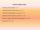 temesvar-barokk-epuletei__002