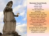 temesvar-barokk-epuletei__045