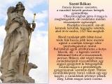 temesvar-barokk-epuletei__047