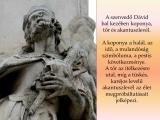 temesvar-barokk-epuletei__055