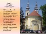 temesvar-barokk-epuletei__059