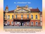 temesvar-barokk-epuletei__063