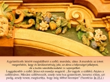temesvar-barokk-epuletei__078