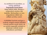 temesvar-barokk-epuletei__106
